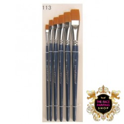 PXP Professional Colours Brush set in case 6 pieces