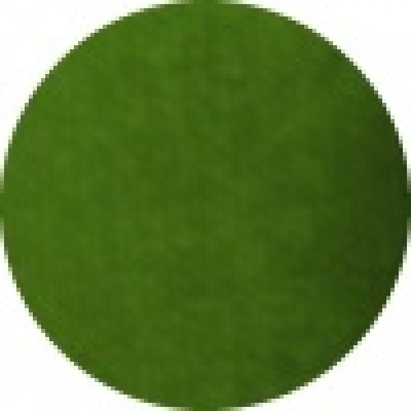 Superstar Face Paint 16g 042 Grass Green