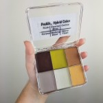 ProAiir Solids Palette Thriller Colours and Activator