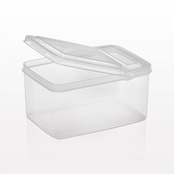 Container with Flip Top Lid