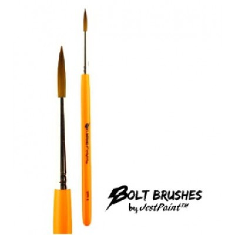 Pro Perfect Paint Brushes Review