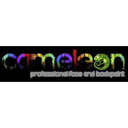 Cameleon Body Paint